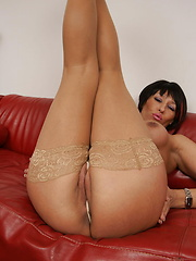 Short-haired coguar in body-colored stockings